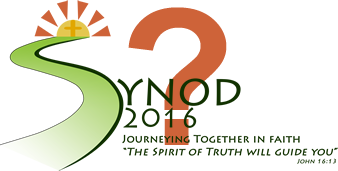 Where are we now and where are are we headed <span>on our Synod Journey?</span>