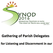 Gathering of Parish Delegates - Preparing for <span>Listening and Discernment in our Parishes</span>
